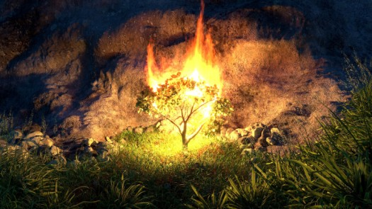 burning-bush-2