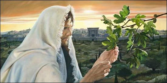 jesusandfigtree
