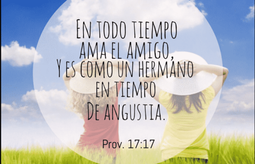 amigo_opt