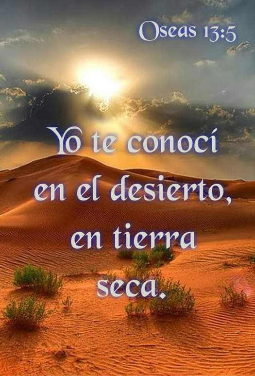 FB_IMG_1439456161838