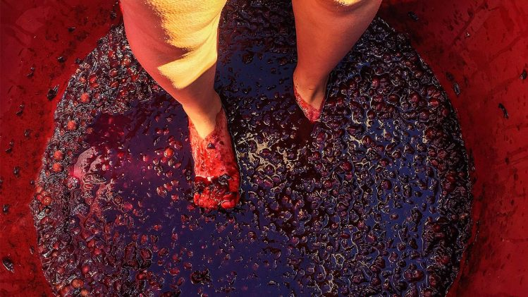 Feature-Grape-Stomping-Wine-Traditions