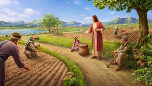 the-Parable-of-the-Sower