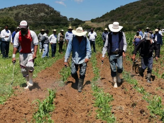 Foto-campesinos-trabajando