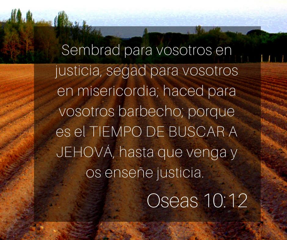 Oseas 10-12